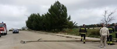 Palo caduto in via De Sica 1