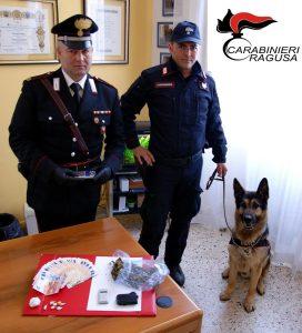 cane-antidroga-carabinieri-ragusa