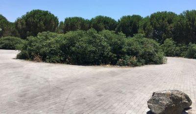 Area a verde di via Paolo Stoppa altra foto